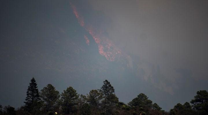 Meksika'da 7 bin hektar alan küle döndü